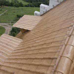 крыша-принт-03